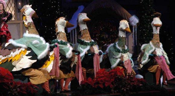 Mormon Geese.jpg